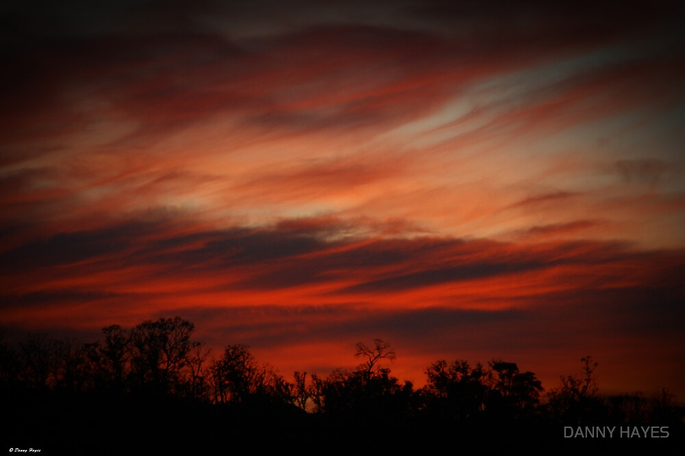 FIRE IN THE SKY by DANNY HAYES