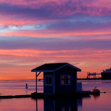 Shoreline Sunrise Shed  by ReachOne