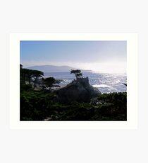 Lone Cypress--Monterey California Art Print