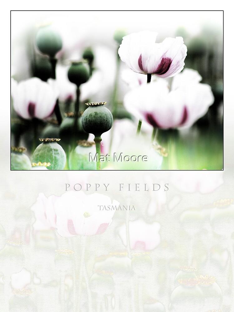 ' Field of Dreams ' by Mat Moore