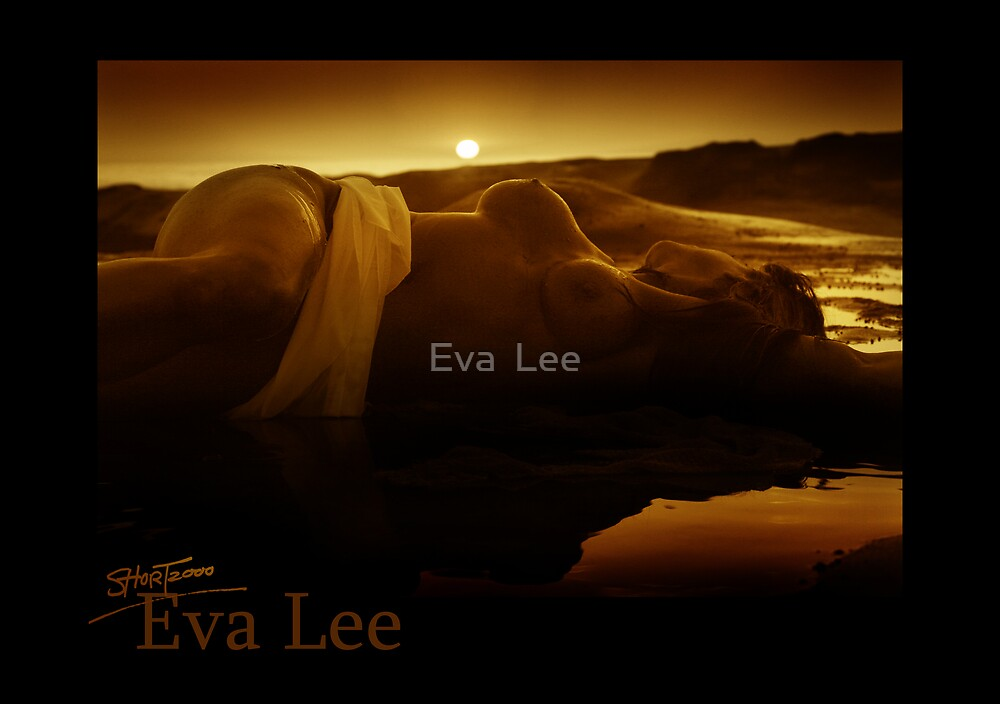 Here Comes the Sun by Eva  Lee