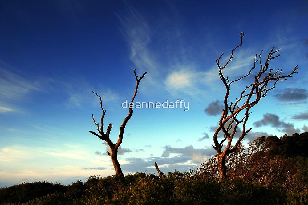 Twiggy by deannedaffy