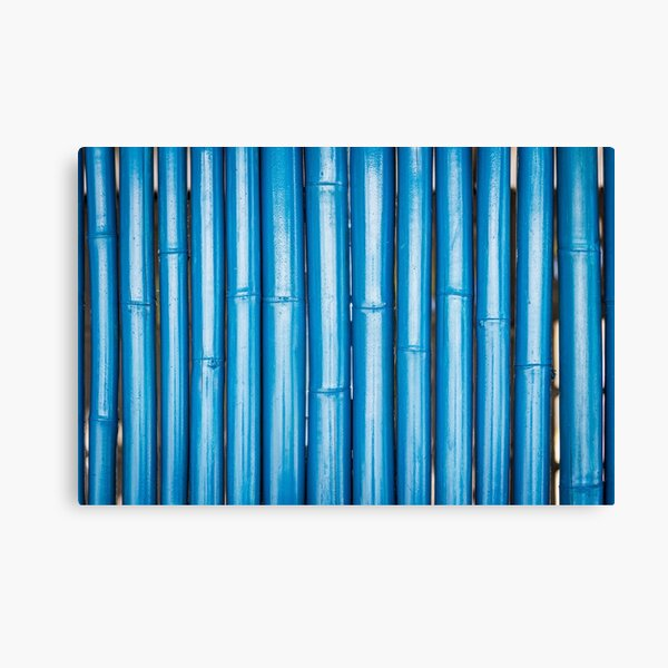 Blue bamboo canes background Canvas Print