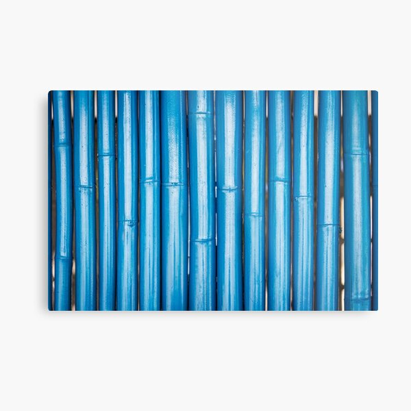 Blue bamboo canes background Metal Print