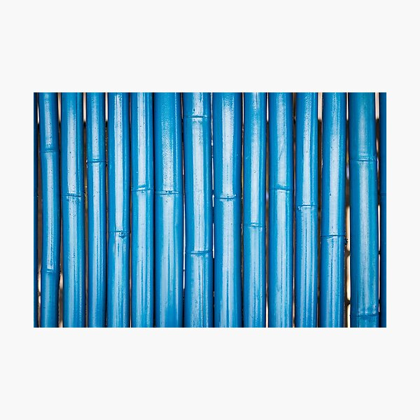Blue bamboo canes background Photographic Print