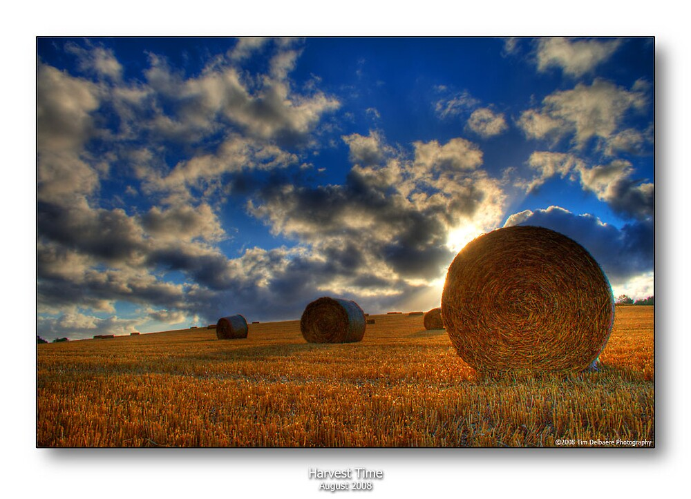 Harvest Time by CadmannUK