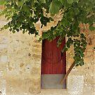 A Door In Orient.....................Majorca by Fara