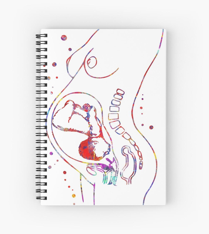 Cuadernos de espiral «Embarazo, Anatomía de la mujer embarazada ...