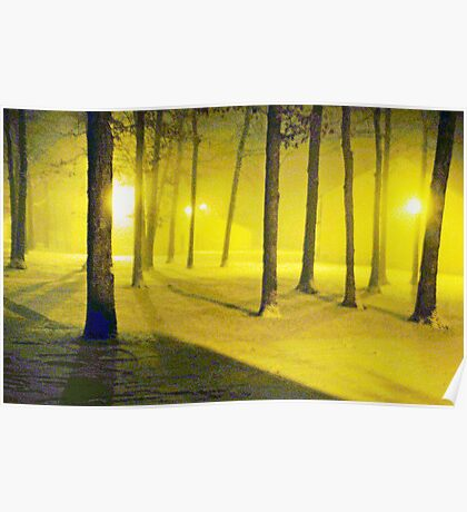 Snow / Bathed In  Golden Light    Poster