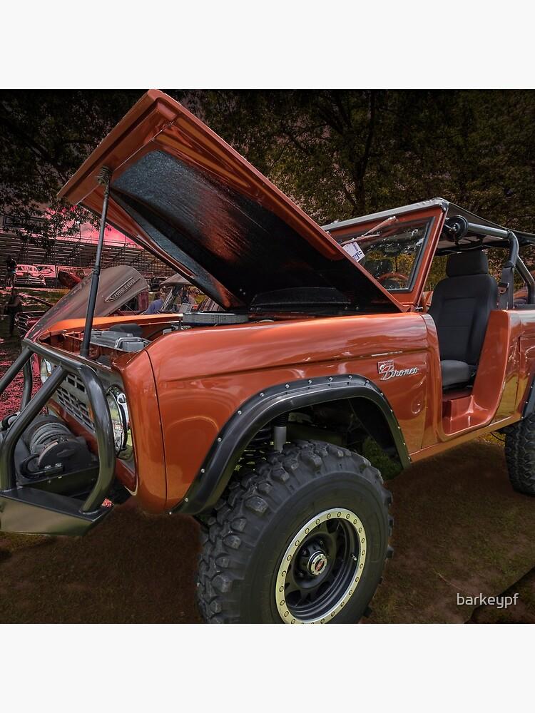 Ford Bronco by barkeypf