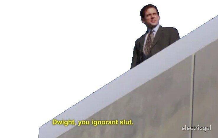 the office quote - dwight you ignorant slut