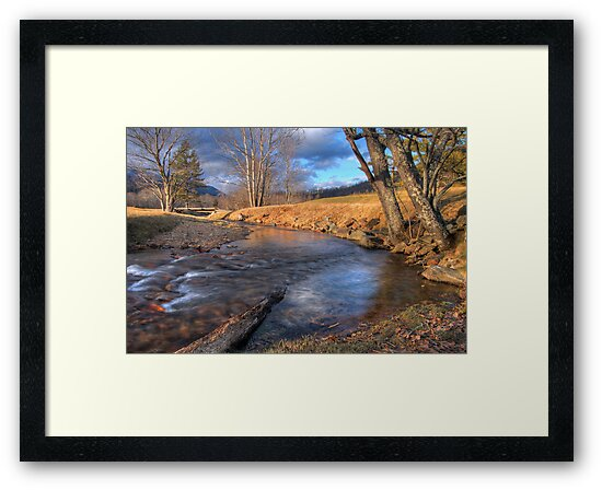 Scene By The Brook by Jane Best