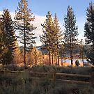 Big Bear Lake by Kevin Bergen