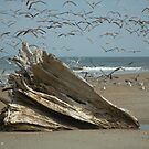 """Flight At The Driftwood by Arthur """"Butch"""" Petty"""