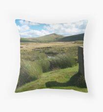 Dartmoor: Taw Marsh Throw Pillow