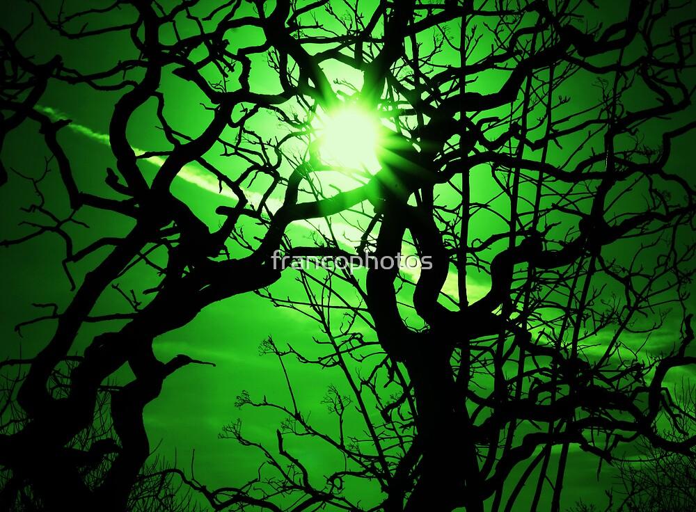 Green by Franco De Luca Calce