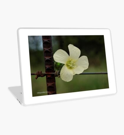 CONTRASTS IN SPRING - WILD FLOWERS Laptop Skin