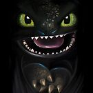 The night Fury by Emiliano Morciano