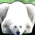 Eisbär - Grün von Marlene Watson