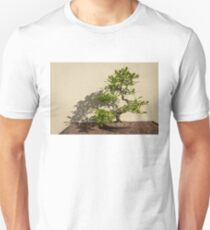 The Living Art of Bonsai - Old Twisted Beech Tree in Miniature Unisex T-Shirt