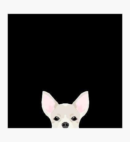 Chihuahua peeking dog breed cute chihuahuas gifts for dog moms pure breed  Photographic Print