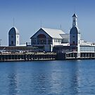 Geelong Foreshore by Fernando Pizzani