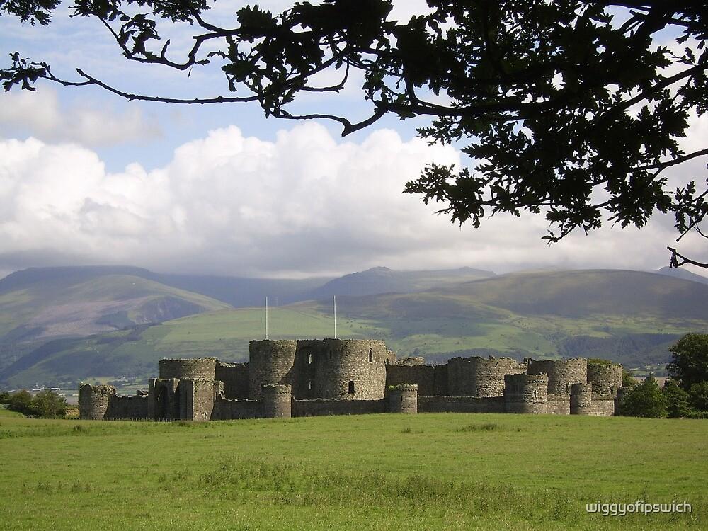 Beaumaris Castle and Snowdonian Mountains by wiggyofipswich
