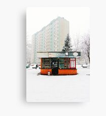 Socialist Modernism Canvas Print