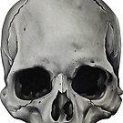 Realistic Skull - Dead Men Tell No Tales by rubywhiteart
