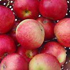 Apples From My Garden by lezvee
