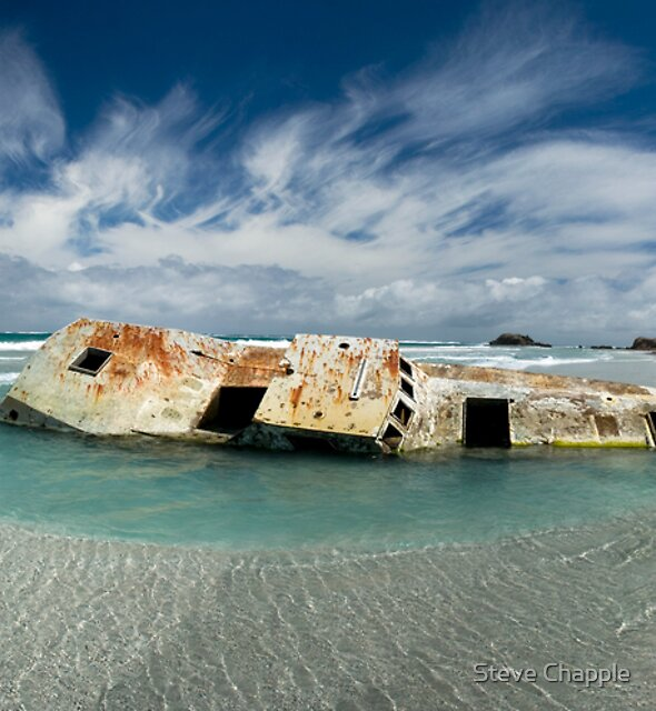 The Wreck by Steve Chapple