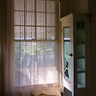 Window by Barbara Morrison