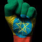 Flagge von Äthiopien auf einer angehobenen geballten Faust von jeff bartels