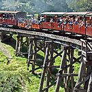 Puffing Billy by joolz