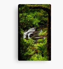 Looking through Nature's Frame Canvas Print