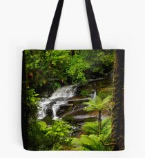 Looking through Nature's Frame Tote Bag