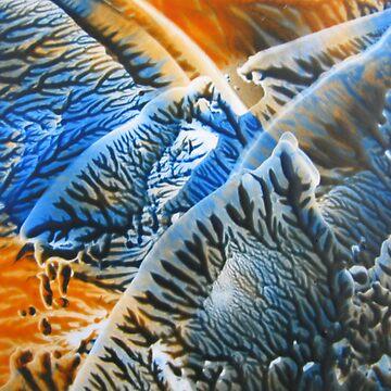 Burst of Blue and Orange by DallasManicom