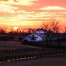Kentucky Sunrise by AcadianaGal
