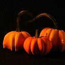 Mini Pumpkins by mklue