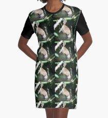 Spying Squirrel Graphic T-Shirt Dress