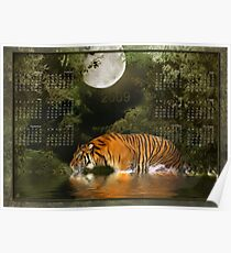 Bengal Tiger (2) - Month at a Glance 2009 calendar Poster