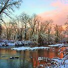 Early Winter Snow by MGriffiths