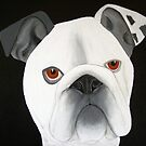 bulldog by Susanne Correa