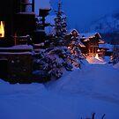 Winter Wonderland by Georgia Bayliff