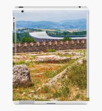 Stadium Landscape iPad Case/Skin