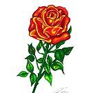 The Rose by CQArtwork