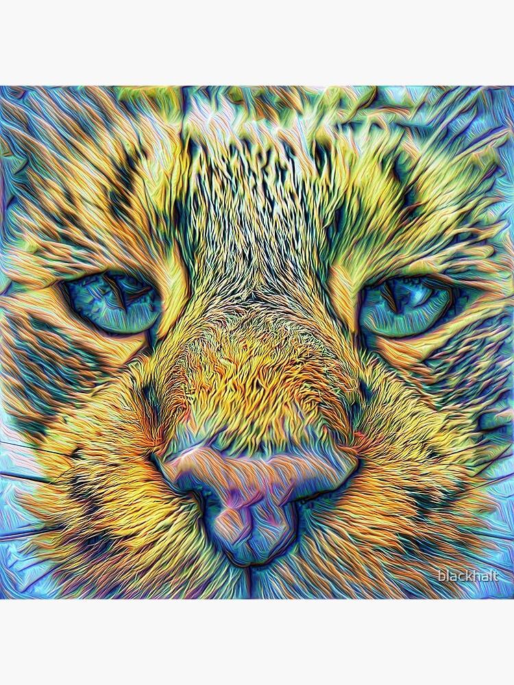 #DeepDreamed Cat v1449127170 by blackhalt