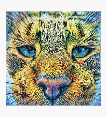 #DeepDreamed Cat v1449127170 Photographic Print