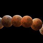 Lunar Eclipse by Peter Hammer