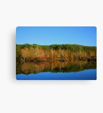 Fall In the Finger Lakes Canvas Print